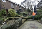 Storm damage to Dutch homes and cars put at over €90m