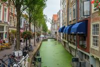 Delft is popular with foreign students. Photo: Depositphotos