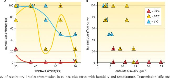 FIG 1 The efficiency of respiratory droplet transmission in guinea pigs varies with humidity and temperature. Transmission efficiency, calculated as the percentage of exposed guinea pigs that contracted infection, is plotted against relative humidity (A) and absolute humidity (B). In each case, data points obtained at 5°C are blue, those obtained at 20°C are yellow, and those obtained at 30°C are red. Numbers within or adjacent to the symbols indicate the number of replicate experiments represented. Trend lines shown in panel A were drawn freehand. Data are reported in references 5, 6, and 8, with the exception of the results of the experiment at 5°C and 20% RH, which is unpublished. The data shown include results obtained with both the A/Panama/2007/1999 (H3N2) and A/Netherlands/ 602/2009 (H1N1) viruses. (Published in Journal of Virology 2014 - Roles of Humidity and Temperature in Shaping Influenza Seasonality. Anice C. Lowen, John Steel)