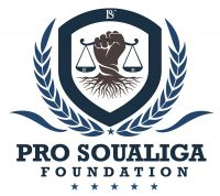 PRO Soualiga Foundation questions current Kingdom Laws in relation to Kingdom of the Netherlands Written Statement