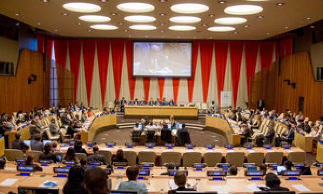 19 new members elected to the UN's economic and social body, ECOSOC
