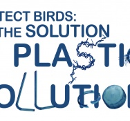Caribbean Endemic Bird Festival Takes Aim at Plastic Pollution