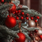 Philipsburg Jubilee Library welcomes in the Christmas Season with a variety of Activities