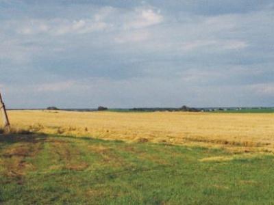 Conditions worsen for stranded migrants along Belarus-EU border