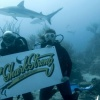 SXM Shark Foundation launched with pledge to improve shark conservation