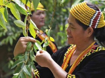 On International Day, UN chief spotlights indigenous peoples' resilience in face of COVID-19 pandemic