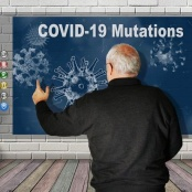 COVID-19 variants from New York, California and Brazil detected